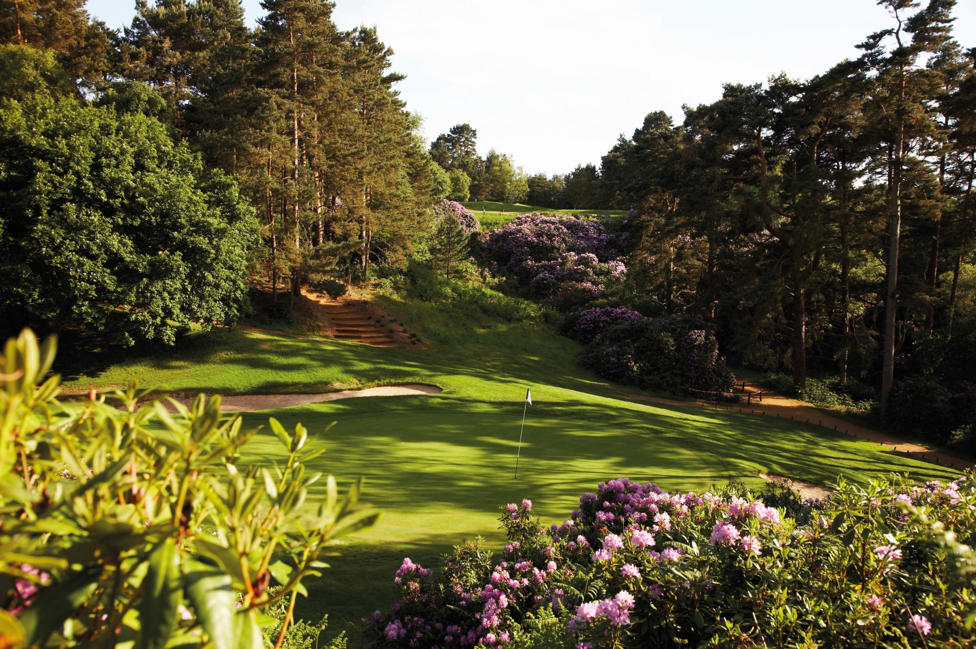 Woburn Duke's Golf Club   National Club Golfer Top 100 Courses