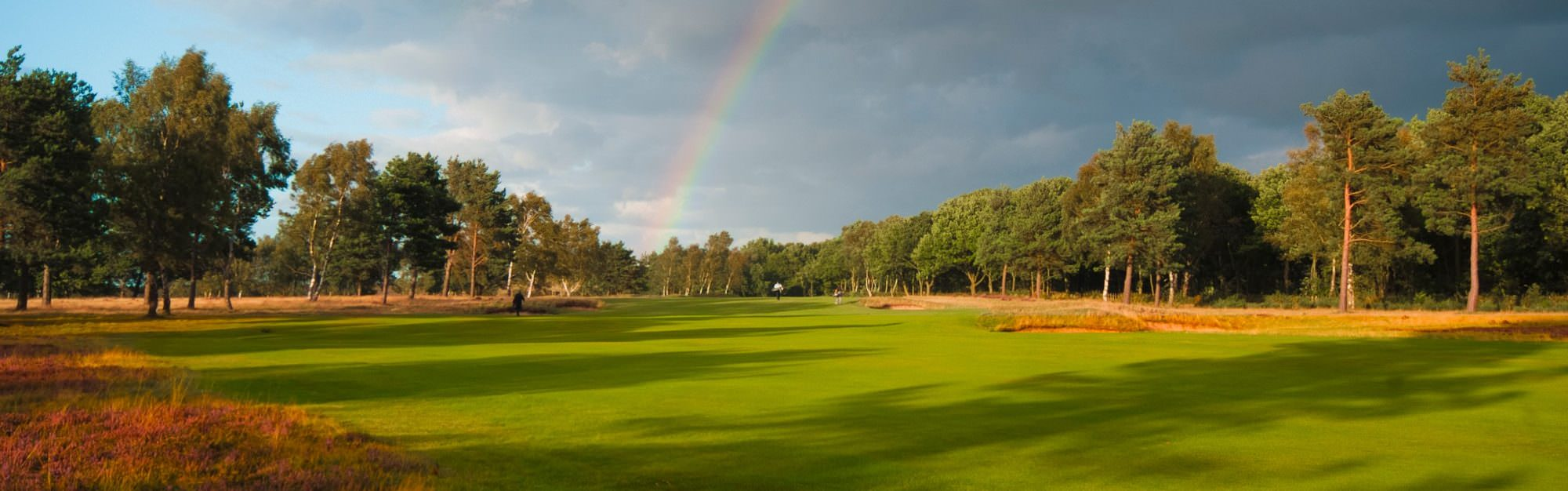 Sherwood Forest: One of the best inland courses in England ...