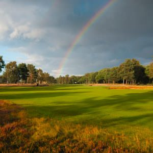 Sherwood Forest: What makes it one of the best inland courses in the country?