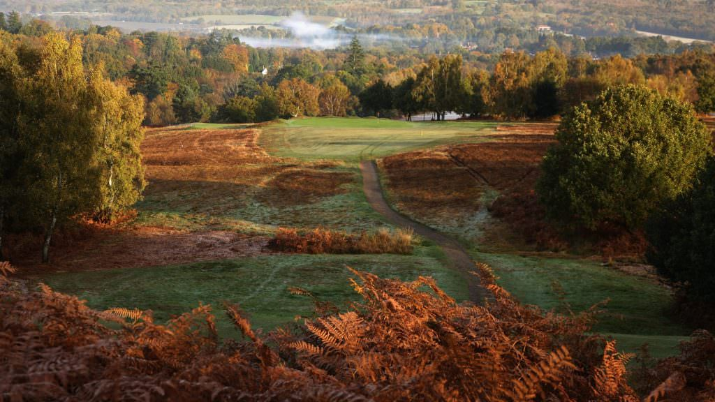 Royal Ashdown Forest (Old)