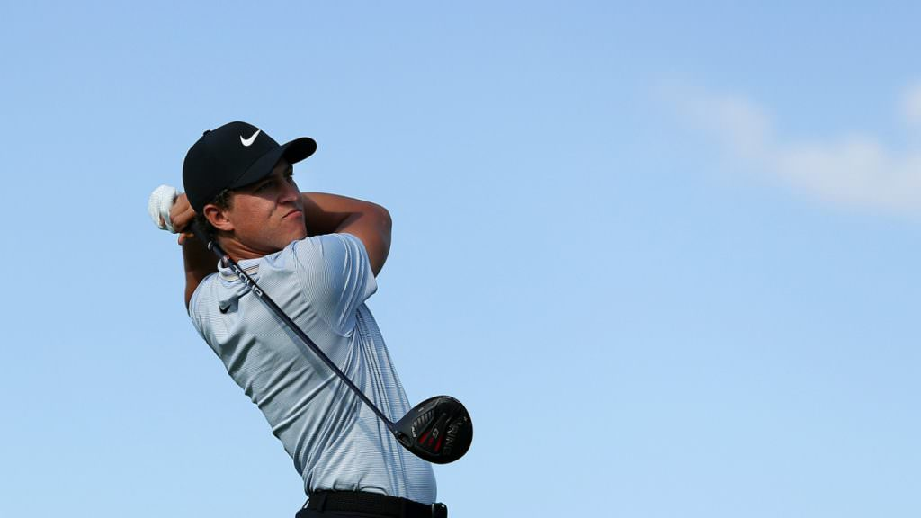 Who are the biggest hitters in golf?