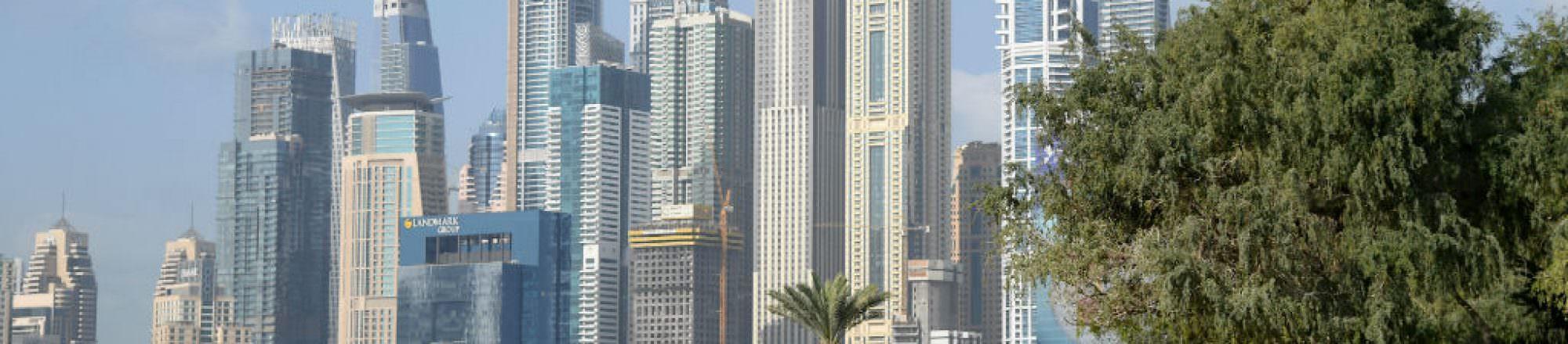 Omega Dubai Desert Classic leaderboard