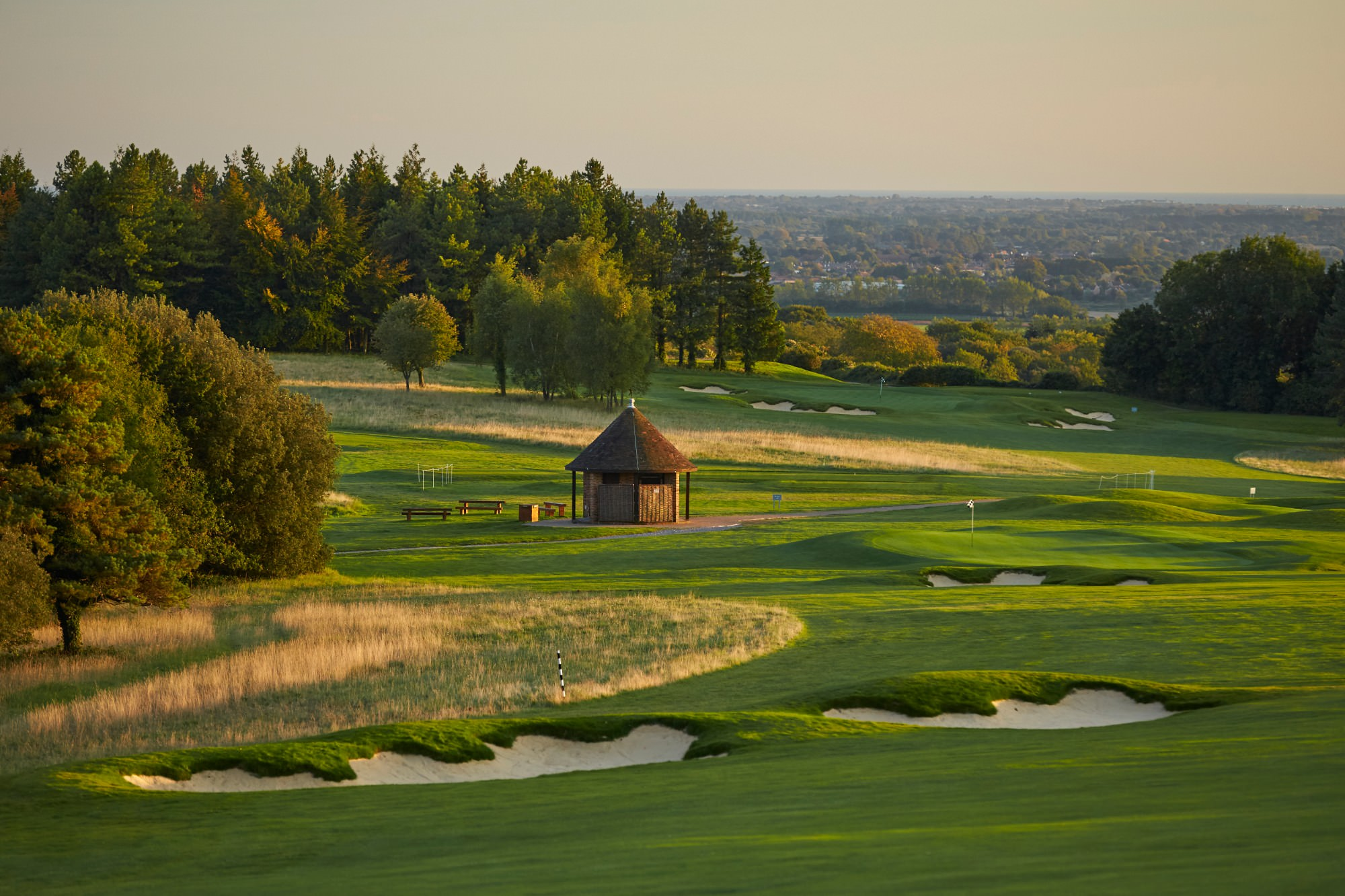 Goodwood Downs   National Club Golfer Top 100 Courses