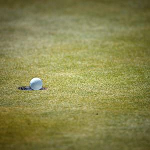 Can Virtual Golf Games Help to Improve Your Real-World Skills?