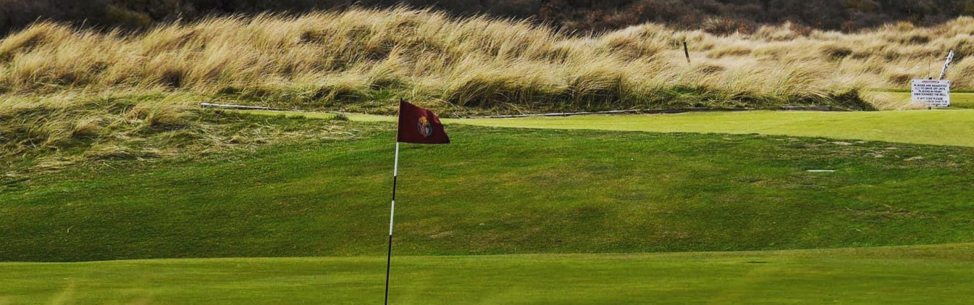 'The course kind of lost its teeth': How Seaton Carew is going back to basics