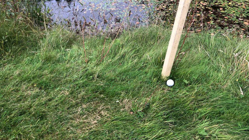 Rules of Golf explained: Can I move a penalty area stake if it's interfering with my shot?