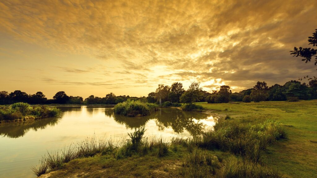 Piltdown: The Sussex heathland with a colourful history