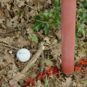 Rules of Golf Explained with John Paramor: How to take relief from a penalty area