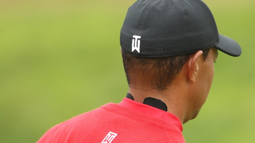 Is this the most exciting Tiger Woods photo you've seen for, well, years?
